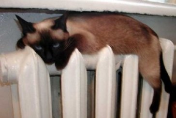 Тепло у помешкання тернополян прийде 1 жовтня