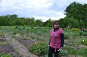 Один із найстаріших ботанічних садів України – на Кременеччині