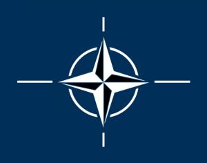 «Масштабна допомога» НАТО: Альянс забезпезпечить українську армію книгами і муляжами гранат