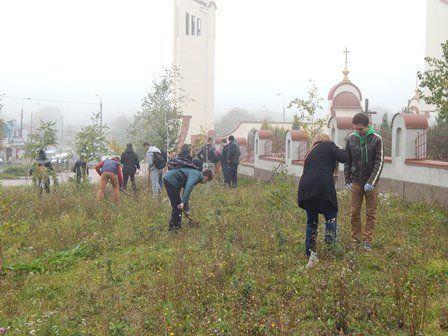 Тернопільські школярі посадили дерева миру