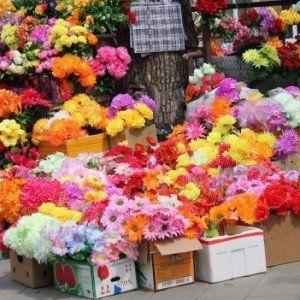 «Поверніть мої квіти…»