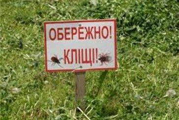 Кліщі атакують тернополян