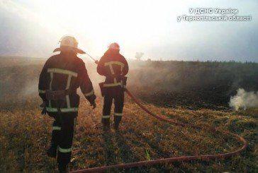 На Тернопільщині минулої доби виникло 36 пожеж: горіла стерня, суха трава, солома, сміттєзвалища, трактор (ФОТО)