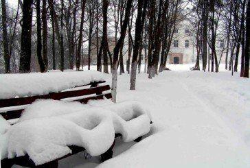 Історичний парк у Язловці на Бучаччині отримав заповідний статус (ФОТО)