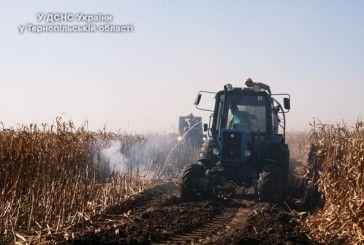 У Збаразькому районі згоріло 15 гектарів кукурудзи (ФОТО, ВІДЕО)
