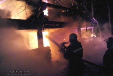 У Бучацькому районі рятувальники запобігли розповсюдженню полум'я на лісові насадження ( Фото, Відео)