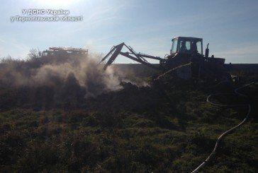 На Теребовлянщині горять поклади торфу. Рятувальники роблять все можливе (ФОТО)