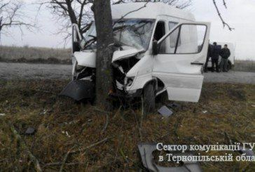 На Тернопільщині водій буса врізався в дерево (ФОТО)