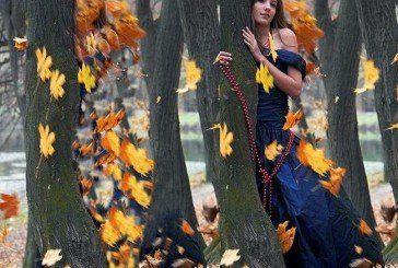 Колись вона любила осінь…