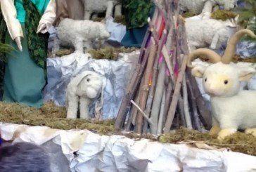 Найбільшу в Україні Різдвяну шопку створили ченці у Тернополі (ВІДЕО, ФОТОРЕПОРТАЖ)