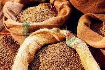 """На Борщівщині """"підприємливі"""" злодюги викрали в господаря зерно"""