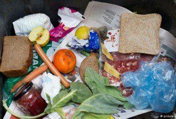 Щороку у Європі 88 мільйонів тонн їжі викидають на смітник