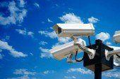 «Вандалстоп»: в урочищі «Соснина» на Шумщині встановили відеоспостереження