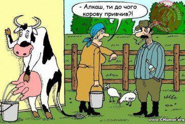 Українські анекдоти. – Моя дружина хоче схуднути і тепер регулярно їздить верхи…
