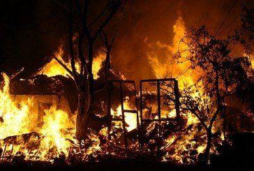 На Гусятинщині через коротке замикання електромережі згоріло 78 голів домашньої птиці