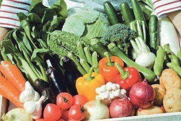 Салат добре росте з огірками, а цибуля захищає моркву від шкідників