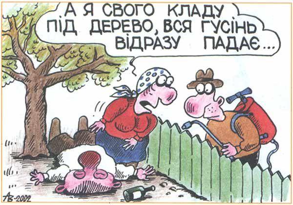 Українські анекдоти. Дружина скаржиться лікареві на чоловіка...
