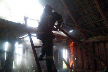 На Бережанщині блискавка спричинила пожежу господарської будівлі (ФОТО)