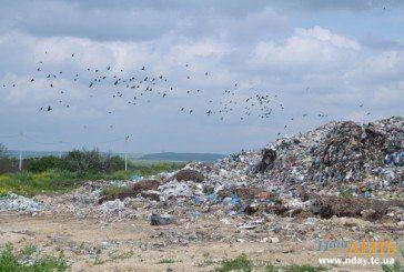 Американський інвестор зацікавився сміттєзвалищем в Малашівцях