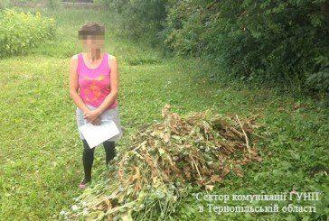 Поліція на Тернопільщині вилучила у господарів цілий причеп маку (ФОТО)