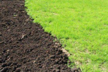 На Лановеччині повернули державі 50 га землі вартістю понад 1,5 млн грн
