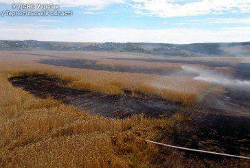 На Борщівщині горіла пшениця і стерня