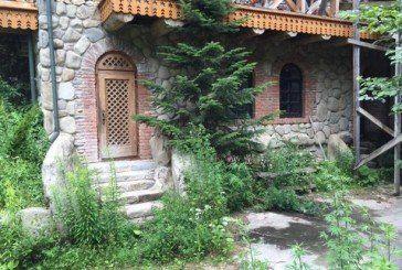 Бур'ян, бруд і павутина. Так виглядає покинута дача Ющенка в Карпатах (ФОТОРЕПОРТАЖ)