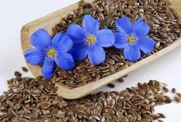Чудо-насіння:додайте до свого раціону льон – і через місяць ви себе не впізнаєте
