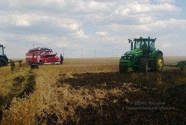 На Гусятинщині горіла пшениця на величезній площі (ФОТО)