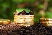 На Тернопільщини сплатили понад 252 млн грн «земельного» податку