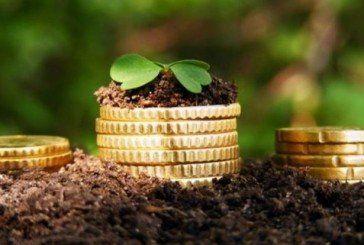 До місцевих бюджетів Тернопільщини надійшло майже 105,5 млн грн плати за землю