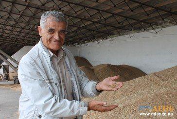 Тернопільський аграрій Петро ІЛІЩУК: «Дивлюсь на землю, як на людину…»