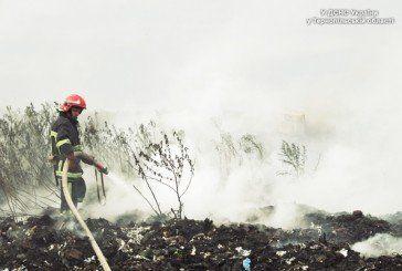 Пожежу біля Малашівців, куди з Тернополя возять сміття, загасили (ФОТО)