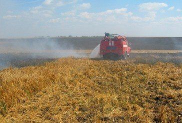 У Козівському районі згоріло 24 гектари ячменю (ФОТО)
