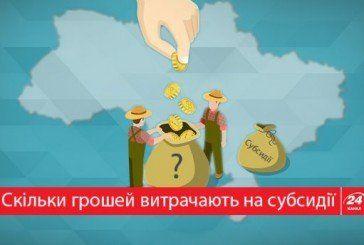 Скільки українців отримують субсидії: цікава статистика