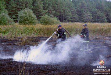 Шумський район: тривають роботи з ліквідації загорання покладів торфу (ФОТО, ВІДЕО)