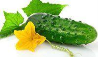 10 секретів гарного врожаю огірків