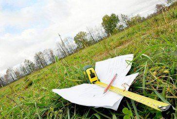 На Чортківщині депутат виділила собі і своєму благовірному майже півтора гектара землі