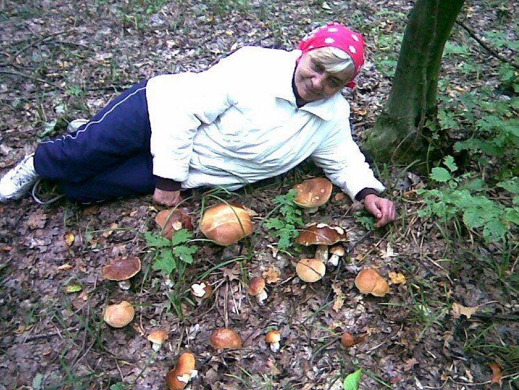 Тамара Столярова і велика сім'я  білих грибів.
