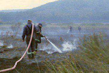 На Шумщині кілька днів горить торф (ФОТО)