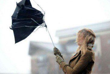 Штормове попередження: завтра на Тернопільщині сильний вітер
