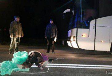 На Тернопільщині під колесами автобуса з польською реєстрацією загинула людина (ФОТО)
