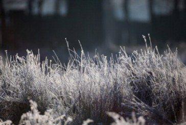 В Україну йдуть заморозки до -5 градусів