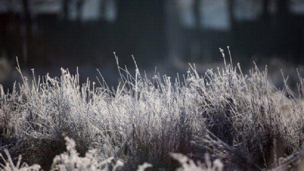 Зима буде короткою і малосніжною