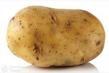 Іржу видалить картопля