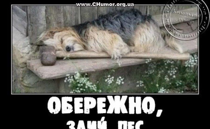 Українські анекдоти: Жінка телефонує чоловікові…