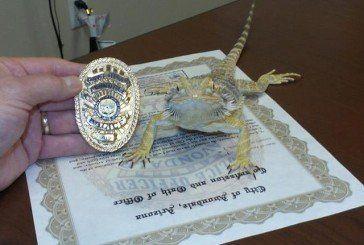 В Америці на службу в поліцію беруть ящірок