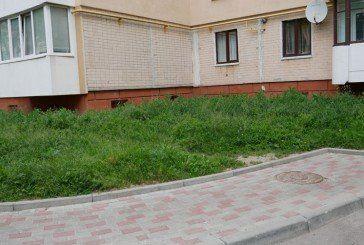Сучасні пісні Тернополя: на Симоненка я зійду – трава по пояс…