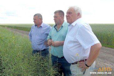 Керівник аграрного підприємства на Тернопільщині розповів про секрети високих врожаїв (ФОТО)