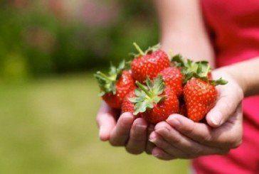 Полуничне щастя: 9 оригінальний рецептів з полуницями